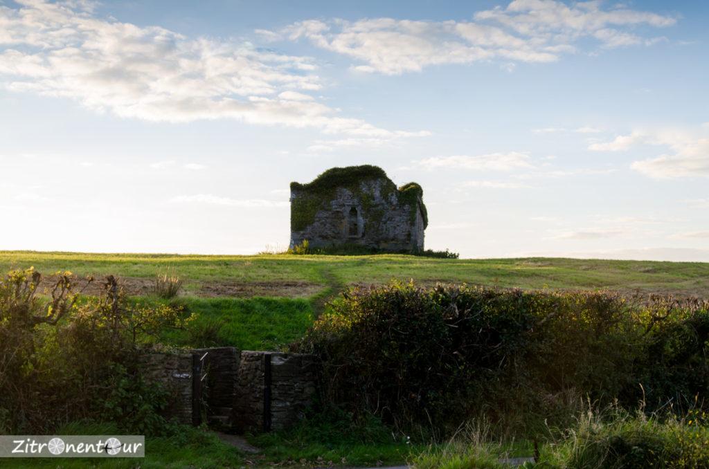 Am Carrigafoyle Castle