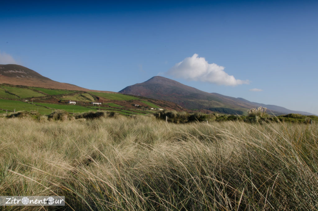Berge auf der Dingle Peninsula vom Inch Strand