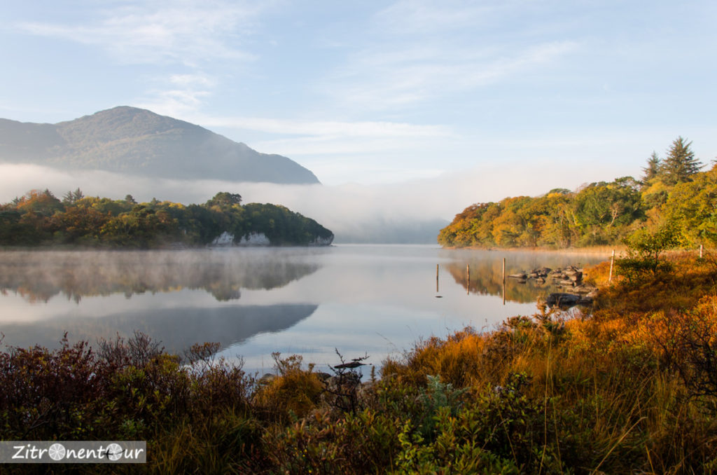 Morgens am See im Killarney National Park