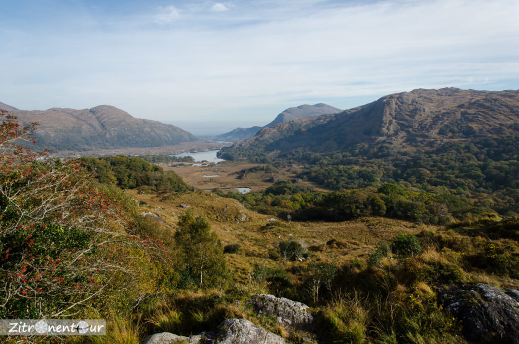 Ladies View im Killarney National Park