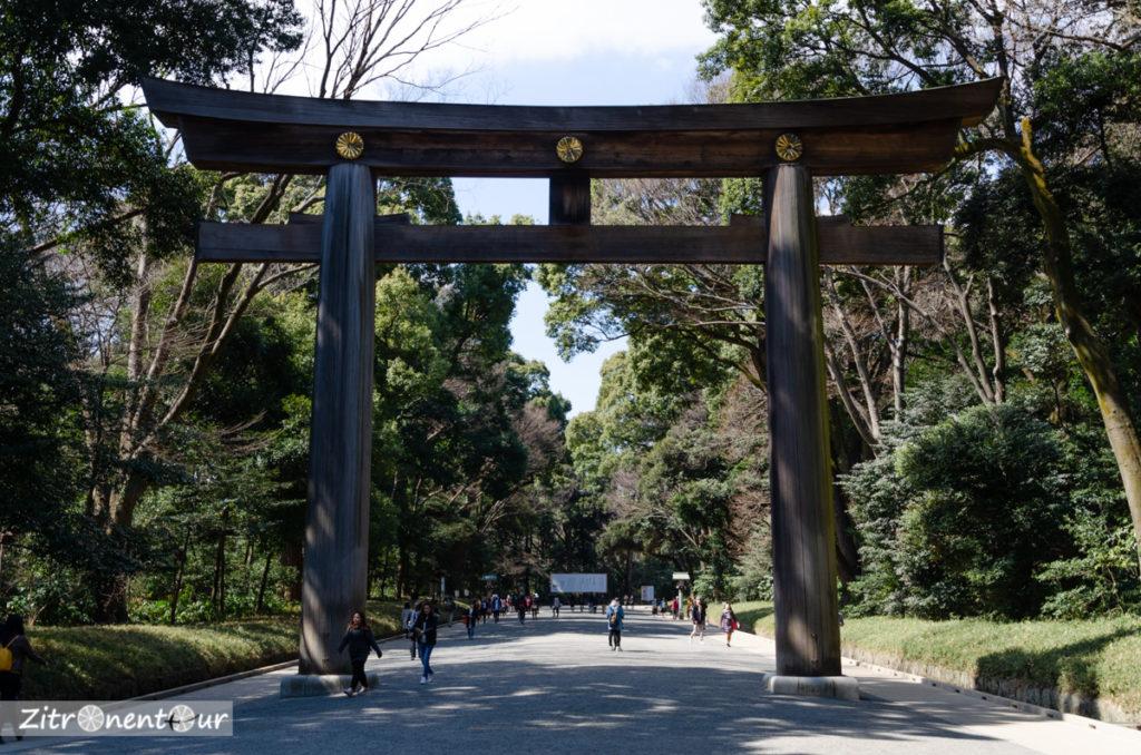 Großes Holztorii im Yoyogi Park