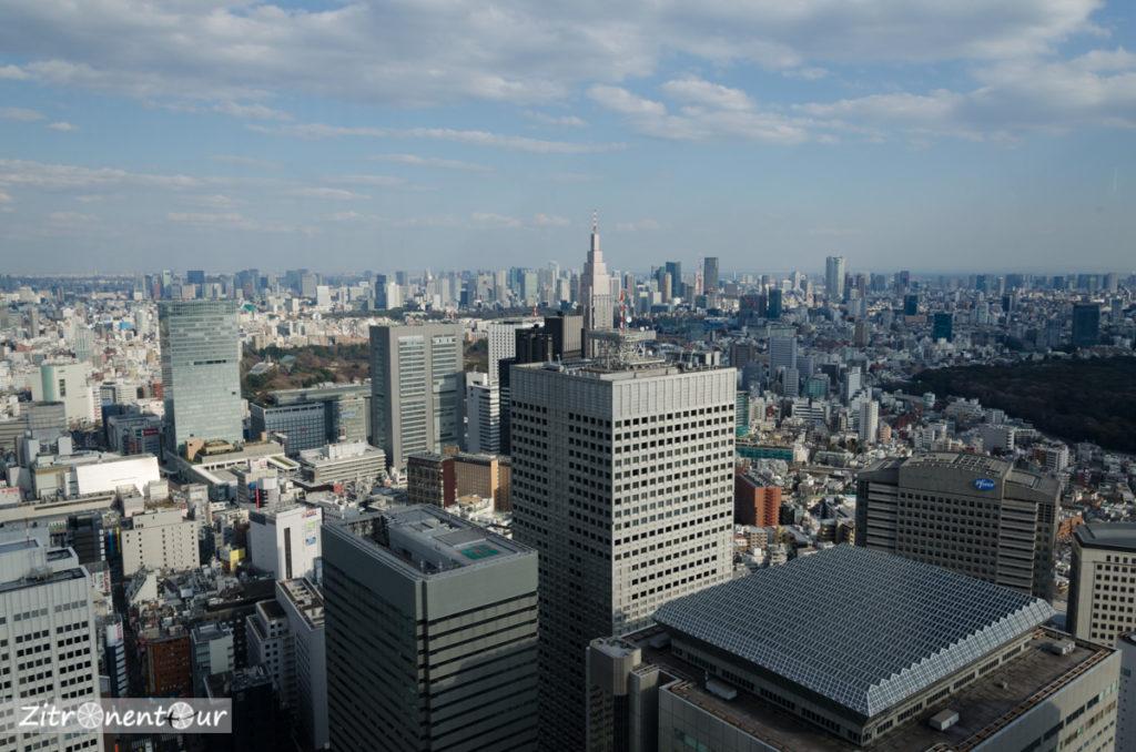 Ausblick über Tokio vom Government-Building mit Skyline