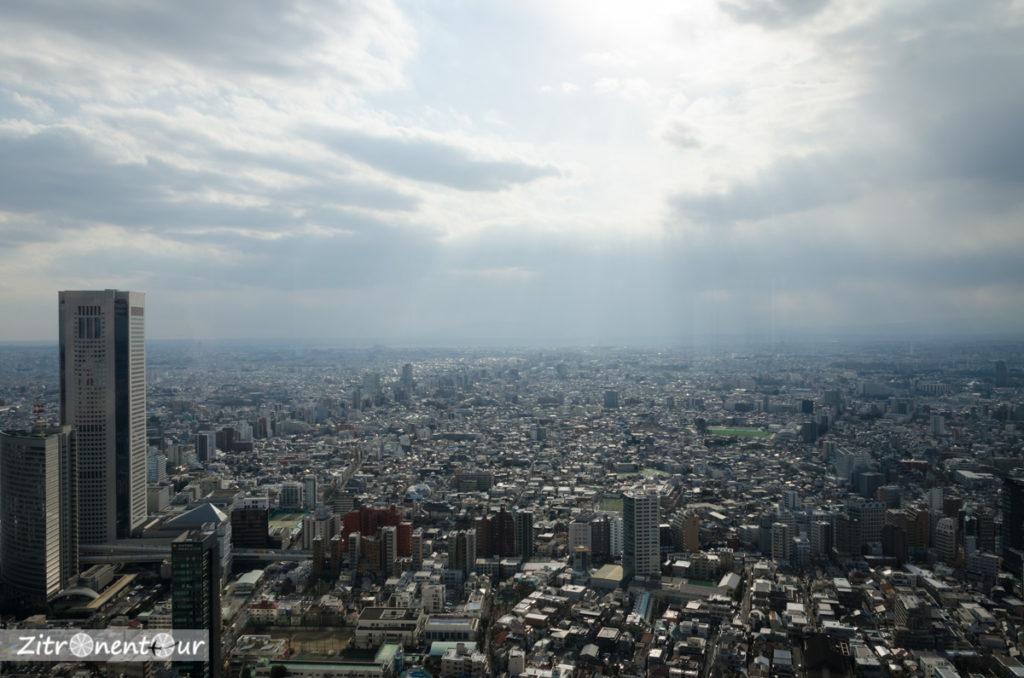 Ausblick über Tokio vom Government-Building