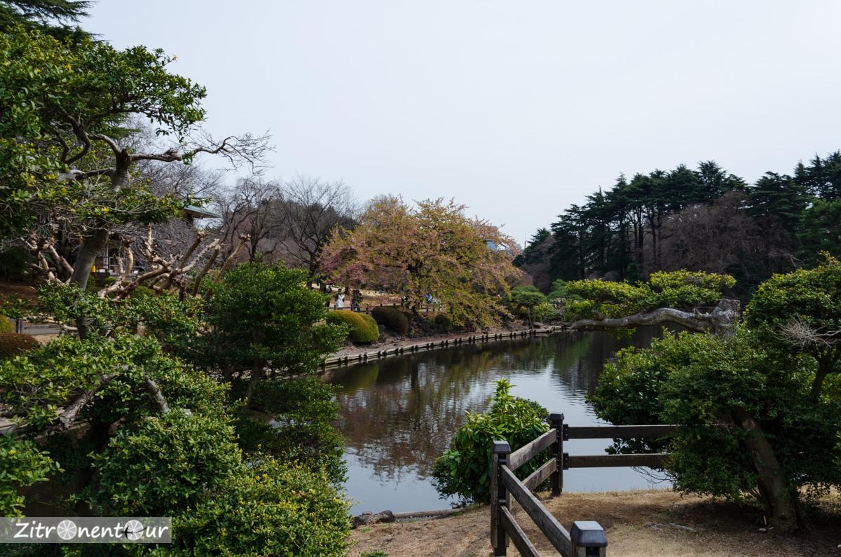 Japanischer Garten im Shinjuku Gyoen Park