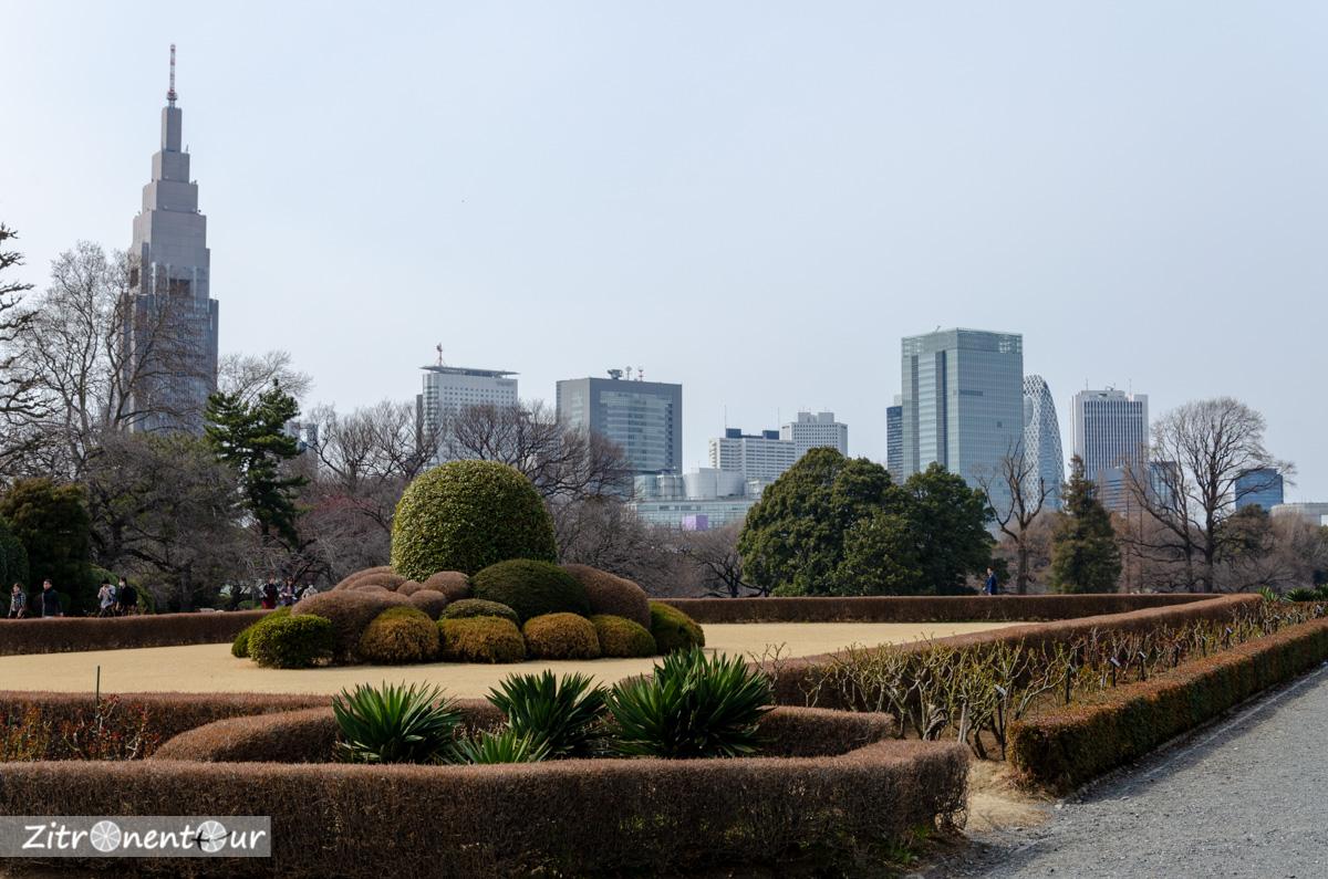 Französischer Garten im Shinjuku Gyoen Park und die Skyline von Tokio im Hintergrund