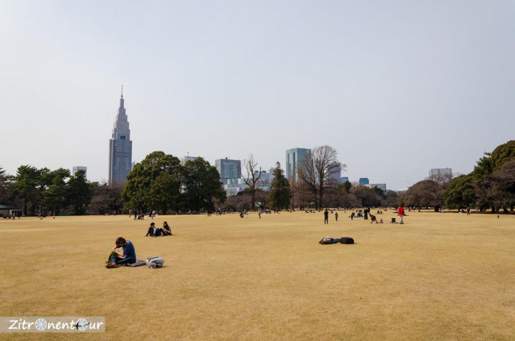 Etwas vertrockneter Englischer Landschaftsgarten im Shinjuku Gyoen Park