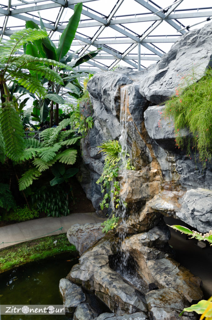 Wasserfall im inneren des Gewächshauses im Shinjuku Gyoen Park