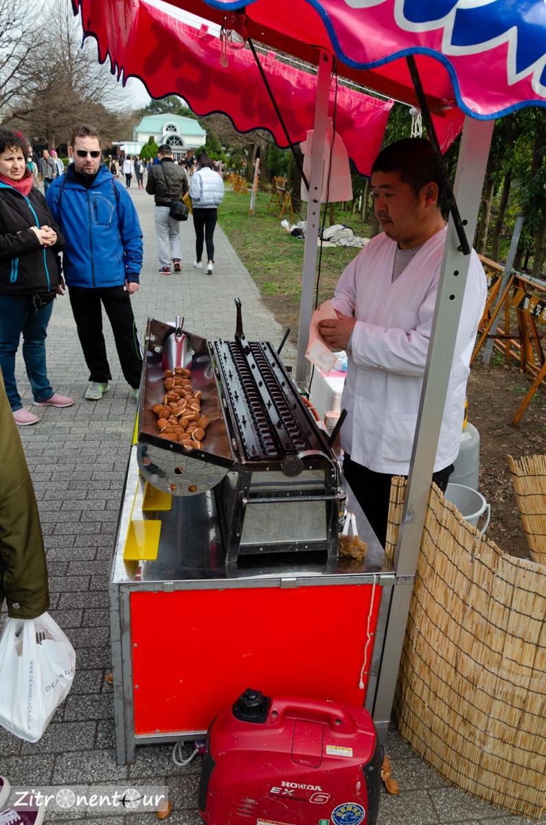 Leckere Teigbällchen gab es beim Streetfood-Verkäufer vor dem Eingang zum Shinjuku Gyoen Park