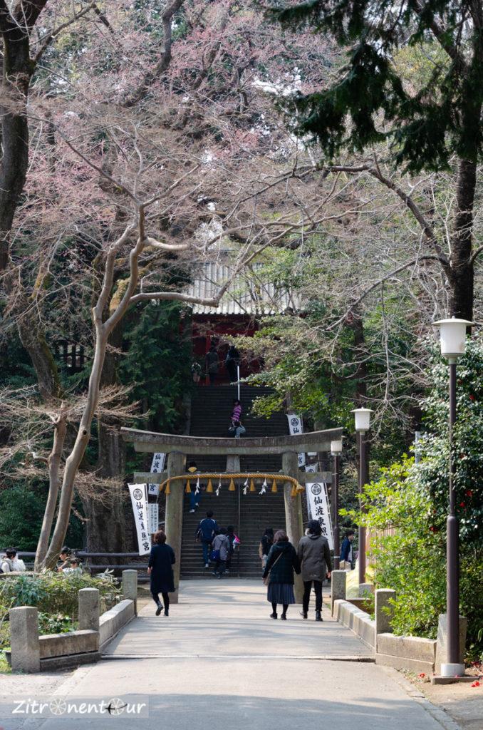 Tempelaufgang kleinerer Tempel auf dem Weg zum Kita-in Tempel in Kawagoe